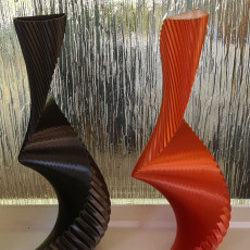 Picture of print of Spiral Twin Vase