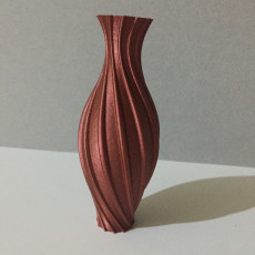 Picture of print of Weaver Vase