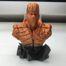 Picture of print of Sub Zero from Mortal Kombat - Support free bust
