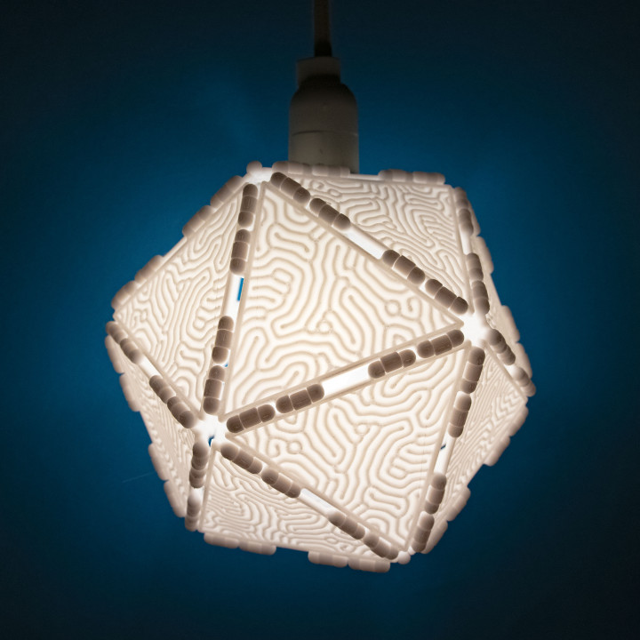 Polypanels // Coral Lithophane