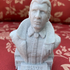 Picture of print of Harrison Ford (Rick Deckard) from BLADE RUNNER