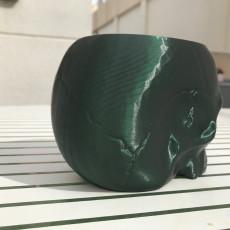 Picture of print of Grim Skull Vase