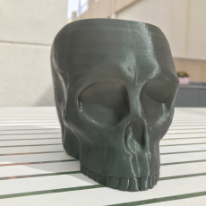Picture of print of Grim Skull Vase This print has been uploaded by Juan De Dios Bonmati