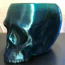 Picture of print of Grim Skull Vase This print has been uploaded by Marc Gugler