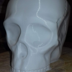 Picture of print of Grim Skull Vase This print has been uploaded by stephane varrault