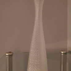 Picture of print of Elegant Vase