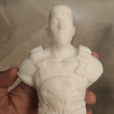 Picture of print of Punisher - Frank Castle / Support Free Bust