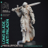 Anti Paladin - Long Blade - Hell Hath No Fury - 32mm scale (Pre-supported) image