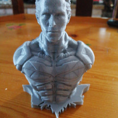 Picture of print of Christian Bale as Bruce Wayne / Batman (Support free bust)