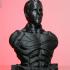 Christian Bale as Bruce Wayne / Batman (Support free bust) print image