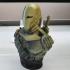 Deathstroke  / Slade Joseph Wilson (support free bust) print image
