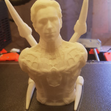 Picture of print of Peter Parker / Spiderman (support free bust)