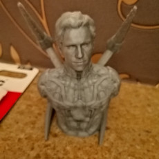 Picture of print of Peter Parker / Spiderman (support free bust) This print has been uploaded by Rikman Hull