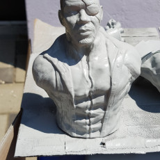 Picture of print of Samuel Jackson as Nick Fury (support free bust)