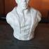 Samuel Jackson as Nick Fury (support free bust) print image