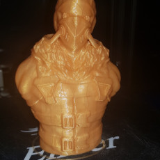 Picture of print of Volture from the Spiderman Comics (support free bust)
