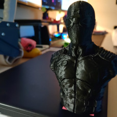 Picture of print of Spiderman Noir / Night Monkey (support free bust)
