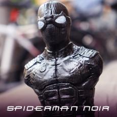 Spiderman Noir / Night Monkey (support free bust)