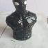 Spiderman Noir / Night Monkey (support free bust) print image