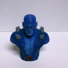 "Picture of print of Panthro from ""Thundercats"" (support free bust)"