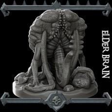 Elder Brain