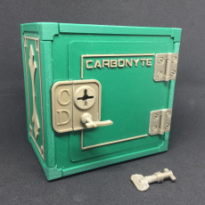Carbonyte Lockable Mini-Safe