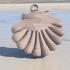 Seashell earrings image
