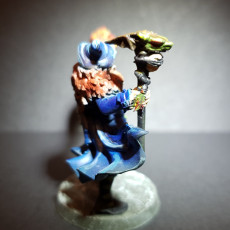 Picture of print of Human Male Wizard - By Dan Kelly (Elegoo Mars Free Edition)