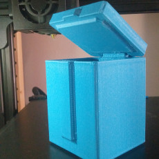 Picture of print of Singularity Box - Support-free hinged lid!
