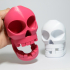 Chompy Skull!  Print-in-place noisy hinged-jaw skull! image