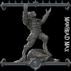 Mawhead Max