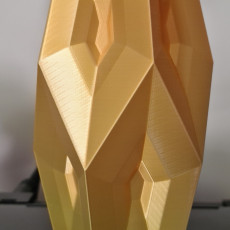 Picture of print of Flame Facet Vase