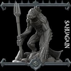 Sahuagain
