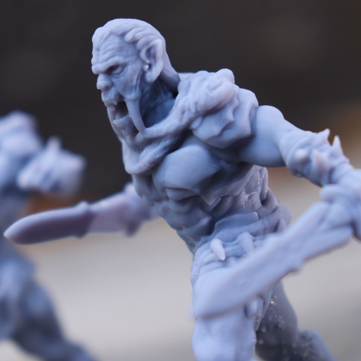 Vampire Warriors (2 tabletop miniatures)