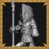 Royal Guard image
