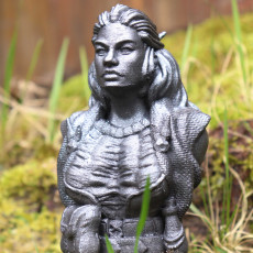 Witch Bust figure