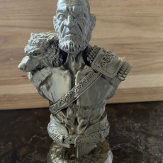 Picture of print of Viking Bust figure (support free) 这个打印已上传 3D Printing Newbie