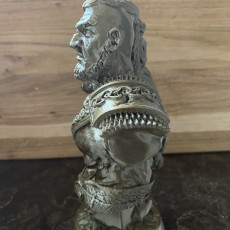 Picture of print of Viking Bust figure (support free)