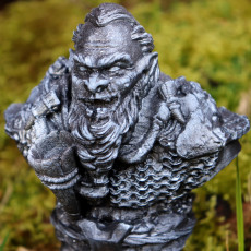 Dwarf bust figure (support free)