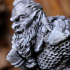 Dwarf bust figure (support free) image