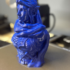 Picture of print of Elb Warrior (support free bust)