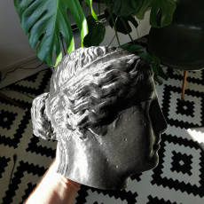 Picture of print of Marble Head of a Sphinx
