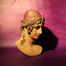 Picture of print of Plaster Bust of Helen