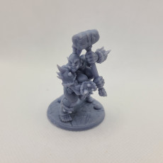 Picture of print of COMPLETE Ogre Marauders (presupported)