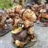 COMPLETE Ogre Marauders (presupported) image