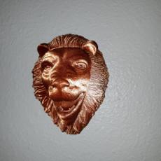 Lions Head Display - wall mount