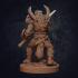 Vaultamir Viking Barbarian - Presupported image