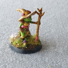 Picture of print of Frogfolk girl mage