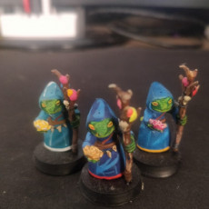 Picture of print of Druid shaman Frogfolk