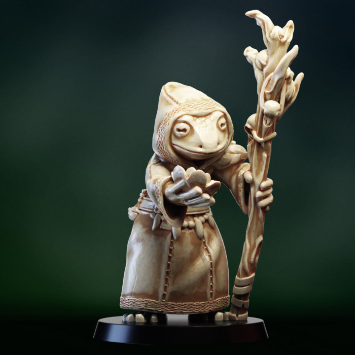 Druid shaman Frogfolk